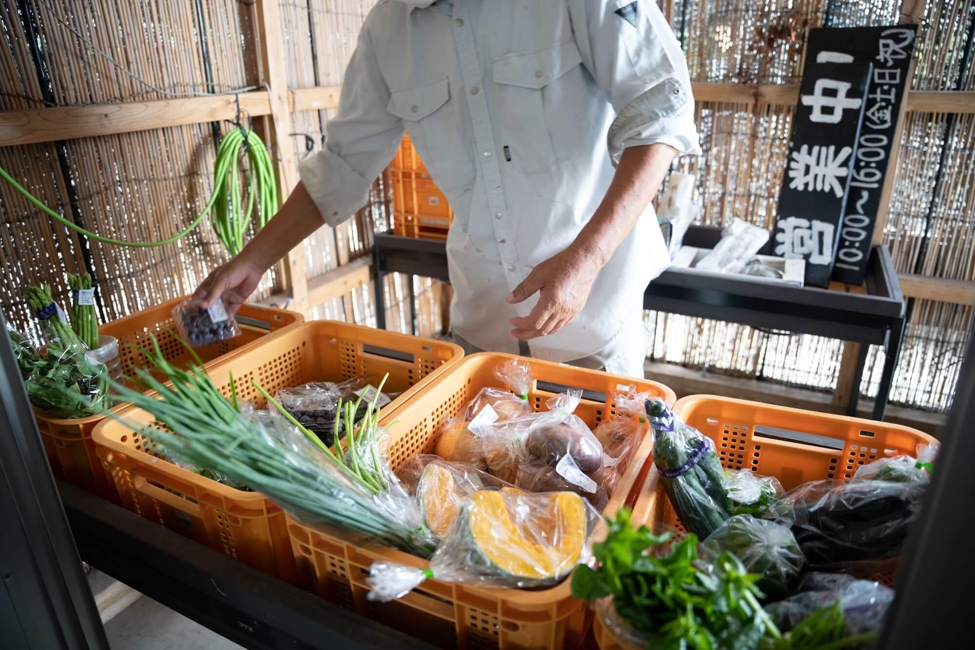 木場のむすび・朝獲れ野菜