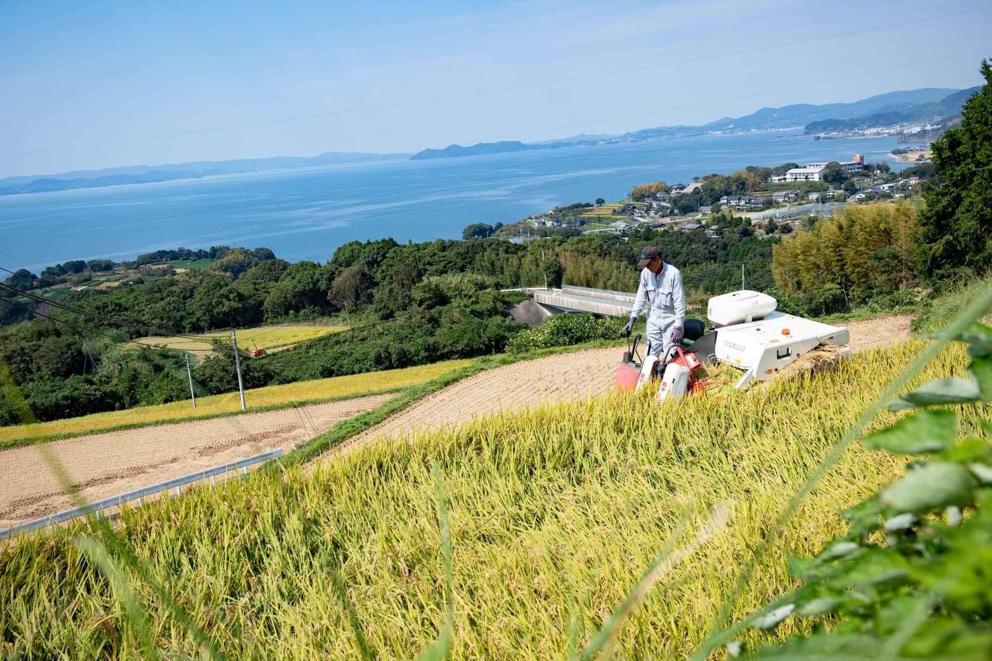木場のむすび・松尾幸彦さんが農業をする様子